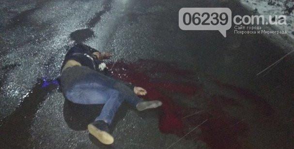 В Покровске автомобиль насмерть сбил двух человек на пешеходном переходе, фото-2
