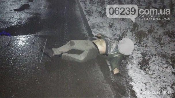 В Покровске автомобиль насмерть сбил двух человек на пешеходном переходе, фото-5