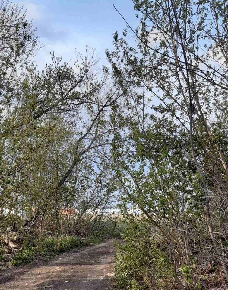 У Донецьку бойовики встановили наметовий табір: соцмережі вважають, що це «резервація»